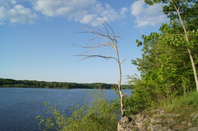 View of Coralville Lake from Woodpecker Trail