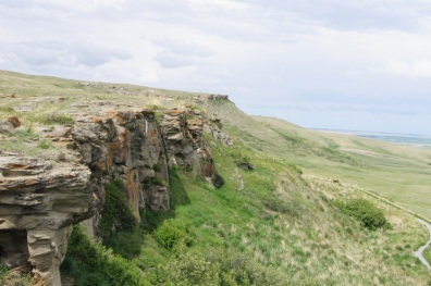 The cliffs at the kill site where the buffalo jumped to their death