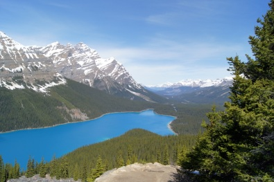 Spectacular Peyto Lake