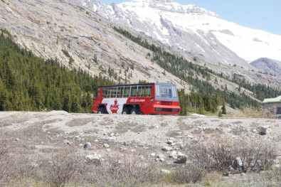 When we were here in 2007, we road one of these buses onto the icefield and walked around on the glacier