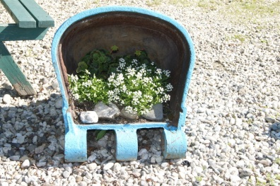 The buckets were also used as planters