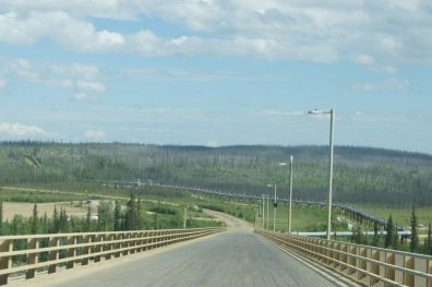 As we crossed the Yukon River Bridge we could see the pipeline