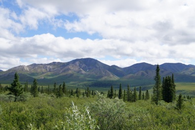 View from overlook on Denali Park Road