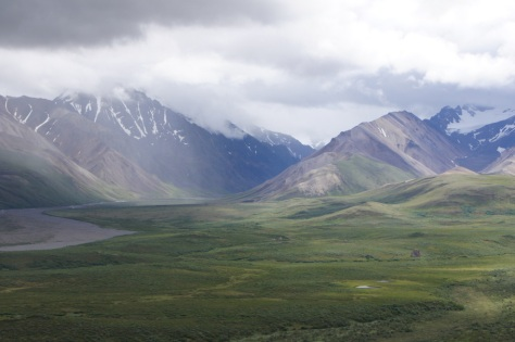 Beautiful green valley at Polychrome Overlook
