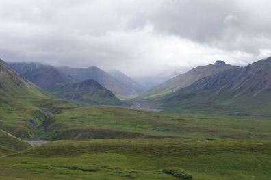 View from Eielson Visitor's Center