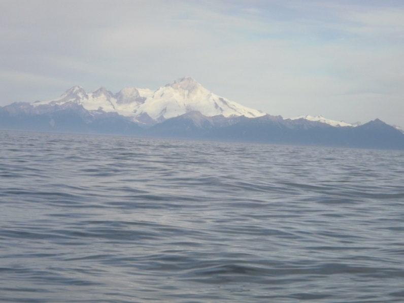 Our view while we fished was one of the volcanoes across Cook Inlet