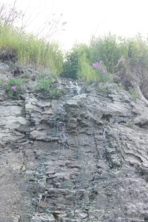 There were trickles of water coming down the bluff by the beach