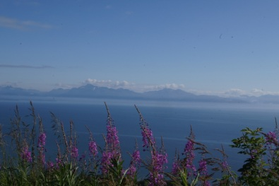 Beautiful day in Homer, Alaska