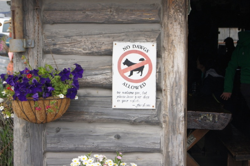 No dawgs allowed at the Salty Dawg Saloon. We went in anyway.
