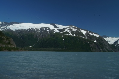 Another glacier at Portage Lake