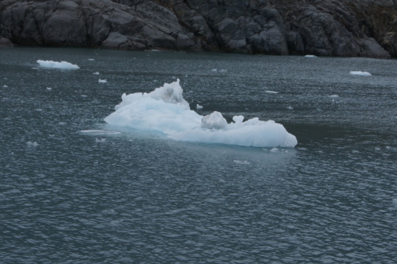 Chunk of ice from the Columbia Glacier