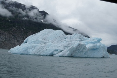 This piece of ice from the glacier is big enough to be called an iceberg