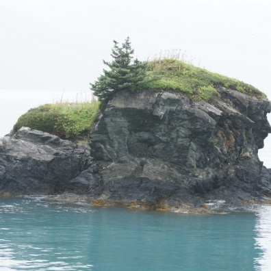 Do you see the profile of a face on the right side of the rock?