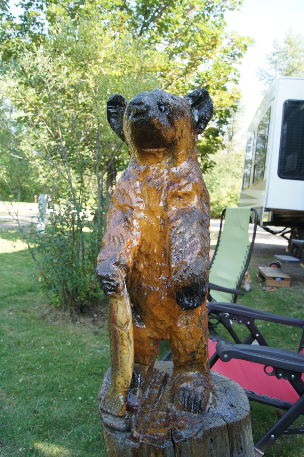 A Bear cub with fish in our campsite in St. Regis, Montana