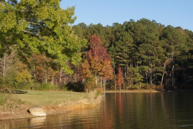 Fall Colors on West Point Lake, Georgia