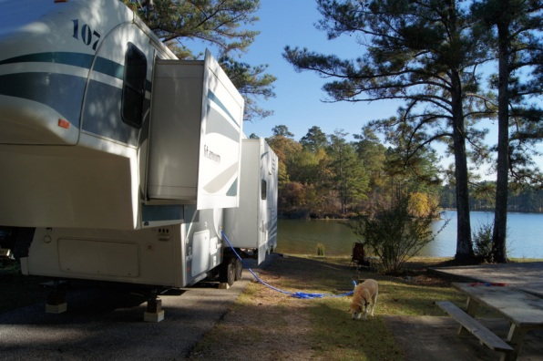 R Schaefer Heard COE Campground on West Point Lake Site 113