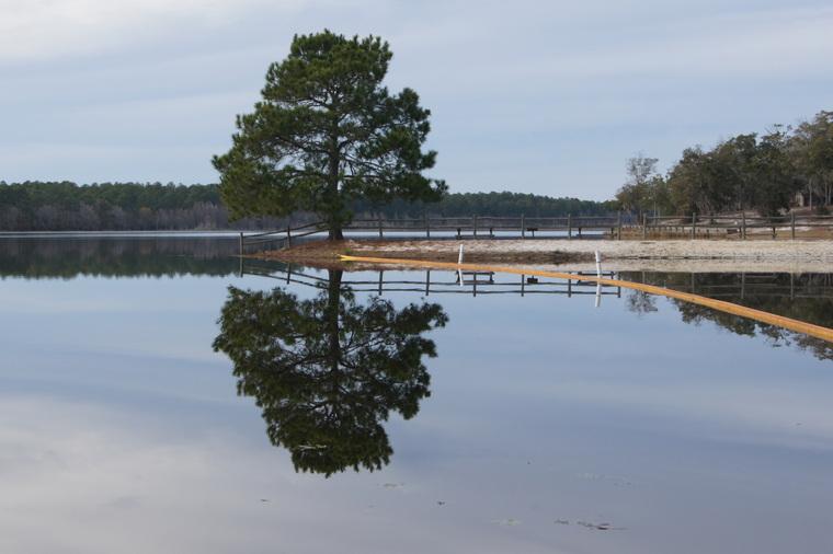 Little Ocmulgee Lake, January, 2013