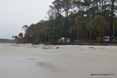 The Beach at Hunting Island State Park Campground, SC
