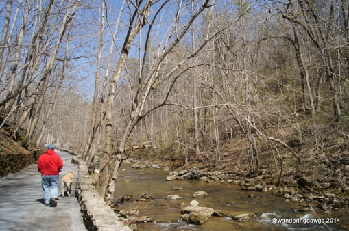 The trail next to Cedar Creek