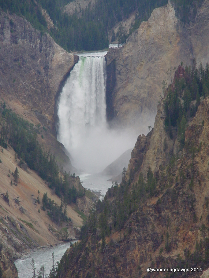 Lower Yellowstone Falls in Yellowstone National Park