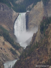 Lower Yellowstone Falls in Yellowstone National Park (Wyoming)