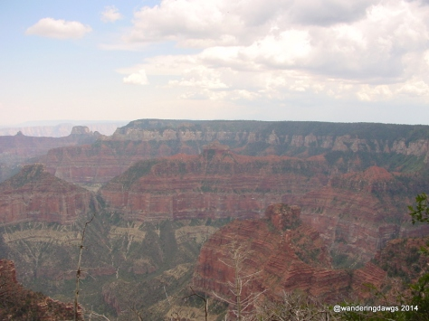 Grand Canyon North Rim Point Imperial