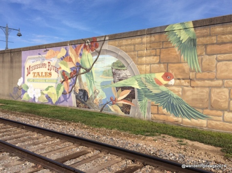 There are 24 different Mississippi River Tales Murals on the floodwall in Cape Giradeau