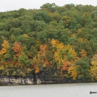Fall Colors at Lake of the Ozarks State Park