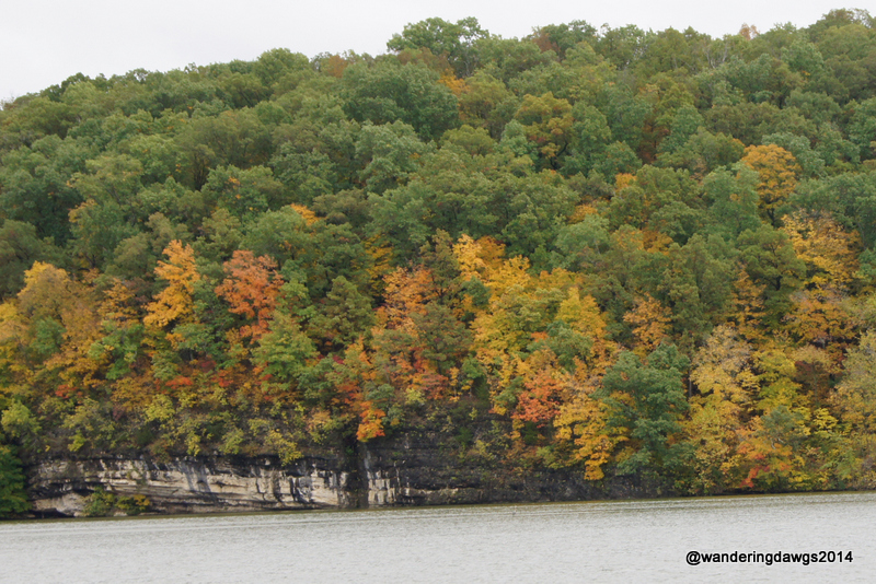 Fall Colors at Lake of the Ozarks
