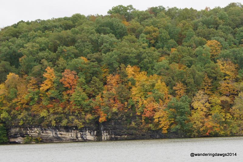 Fall Colors at Lake of the Ozarks
