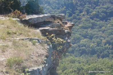 Canyon Overlook at Petit Jean State Park