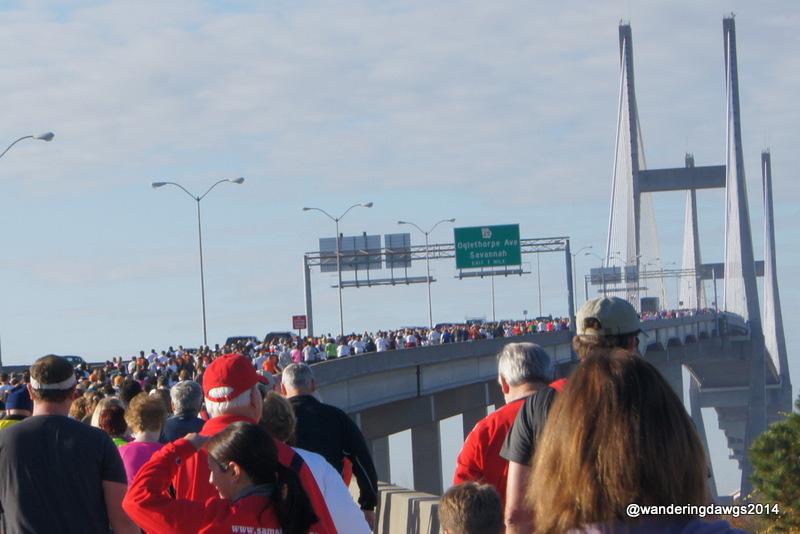 Swarm at Savannah Bridge Run 2012