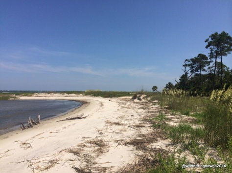 Going for a boat ride to walk on a deserted barrier island beach