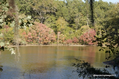 R. E. Bob Wooddruff Lake at Gunter Hill COE, Alabama