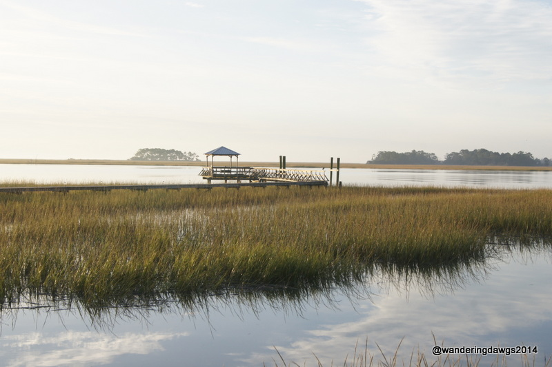 High Tide in the Salt Marsh