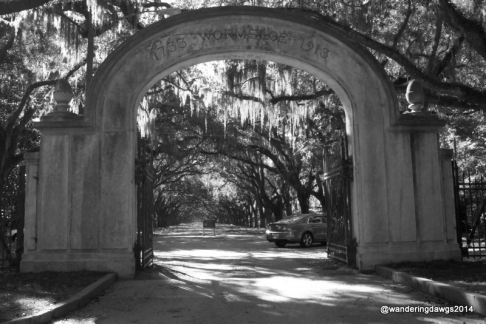Entrance Gate to Wormsloe