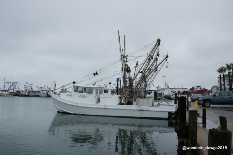 Shrimp Boats in Rockport, Texas