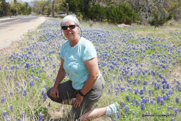 Beth in the bluebonnets