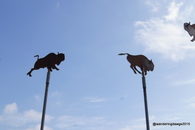 Buffalo Weather Vanes