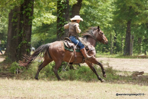 Outrider in Chuck Wagon Race