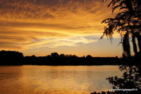 Sunset over the Alabama River at Prairie Creek Campground