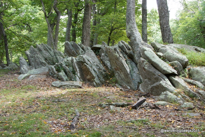 Rocky Knob picnic area on the Blue Ridge Parkway in Virginia