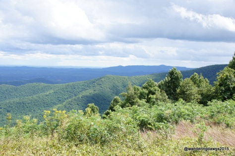 Blue Ridge Parkway from overlook at Rocky Knob Visiter's Center