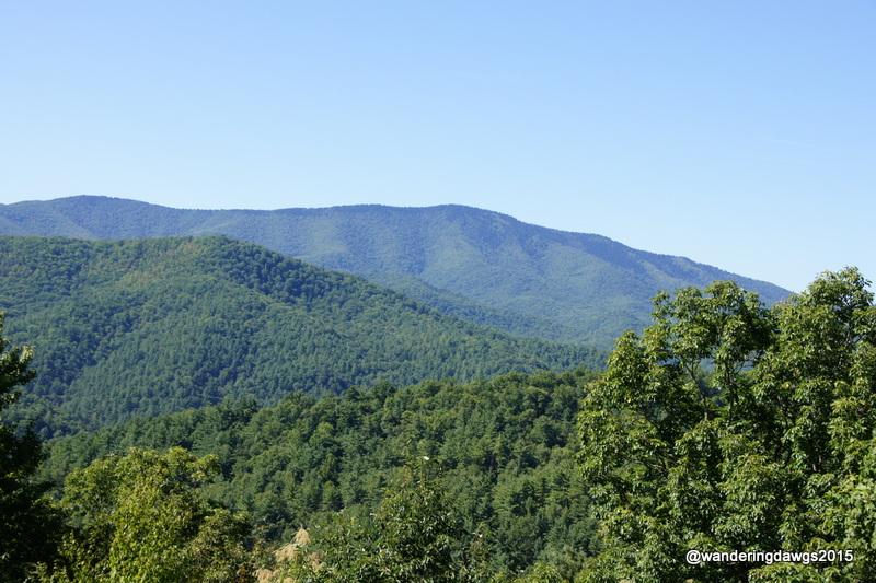 Cataloochee Valley Overlook Great Smoky Mountains