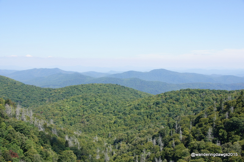 Beautiful day for a drive on the Blue Ridge Parkway in NC