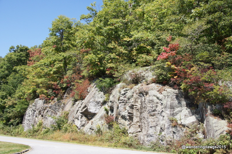 Fall Colors on Blue Ridge Parkway in NC