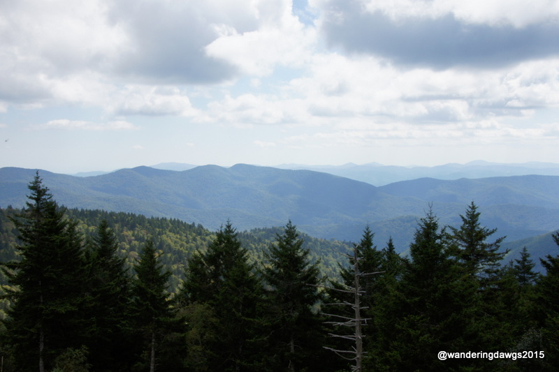 Highest Point Blue Ridge Parkway in NC