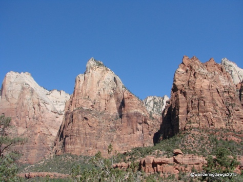 The Tree Patriarchs in Zion National Park, Utah