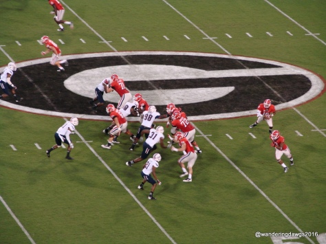 G is for Georgia Bulldogs