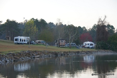 Loop A at Eastbank COE Campground